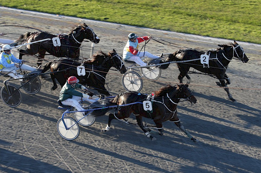 Beaudiene Boaz, centre, beating Bettor Spirits at the 2014 Harness Jewels. His sale to Australia netted a fantastic profit for his partnership members.