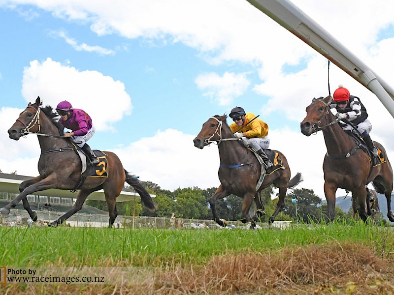Princess Amelie scores her maiden win at Tauherenikau, beating Tutta La Classe (rails) and Kahu Rock. PHOTO: Race Images.