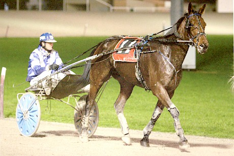 Galleons Sunset scored a brave win in the Interdominion Trotting Grand Final.