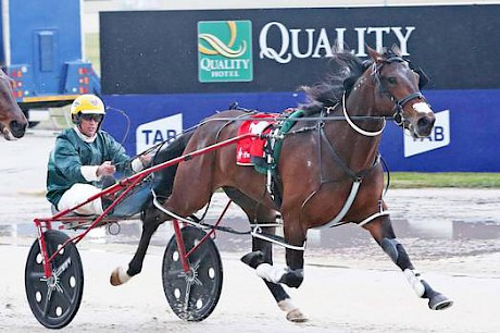 David Butcher rated King Of Swing perfectly to win the Breeders' Crown Final.