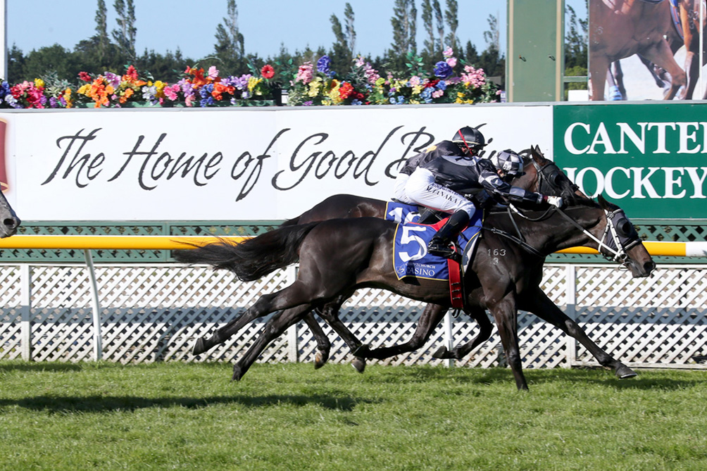 Kamanda Lincoln … showed his staying promise at Riccarton