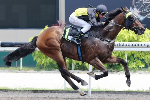 Lincoln Road started his career in Singapore with five wins on end