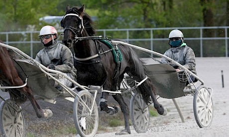 Northview Hustler and Andre Poutama in training at Pukekohe. Poutama will keep the cup drive if the horse makes the field.