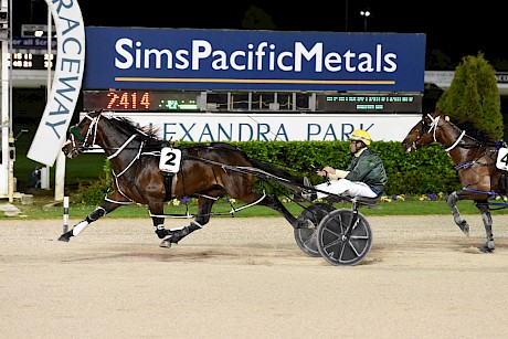 Make Way in winning form at Alexandra Park. PHOTO: Race Images.