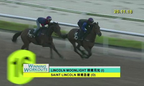 Lincoln Moonlight trackwork