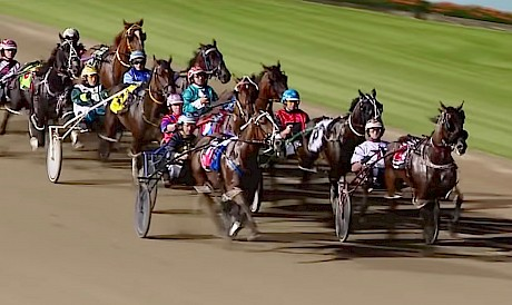 Vasari is about to hand up to Chase Auckland at Menangle last Saturday.