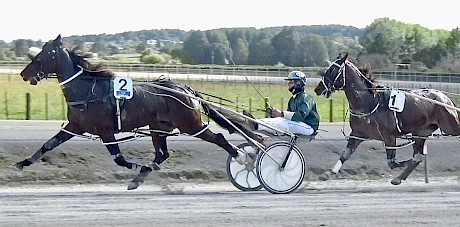 Double Or Nothing stretching out well in a recent workout at Pukekohe.