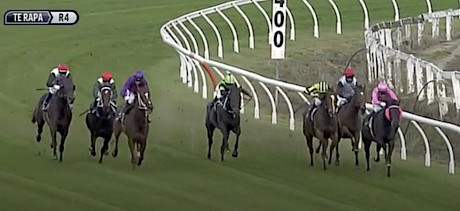 Lincoln Green, in purple colours, has run right off the track round the home turn at Te Rapa.