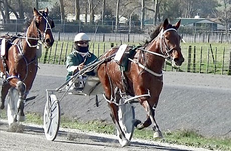 Lindi Lincoln has trained on well since this fast qualifying run.