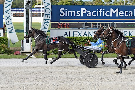Perfect Stride sprints home to score easily at Auckland in January. PHOTO: Joel Gillan/Race Images.