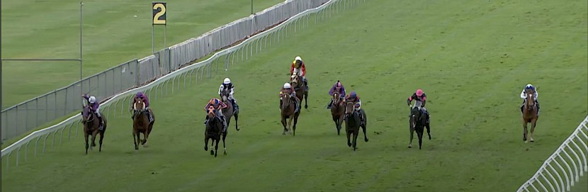 Platinum Spirit , extreme left with plenty of room, sails home to score at Trentham.