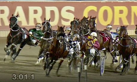 Northview Hustler and Hayden Barnes are pushed extremely wide turning for home in tonight's Redcliffe Cup.