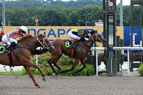 Both of Pratt Street's wins have been on the polytrack. PHOTO: TriPeaksImagery.
