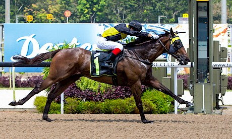 Lincoln Moonlight was impressive in this maiden win at Kranji last month. PHOTO: TriPeaksImagery.