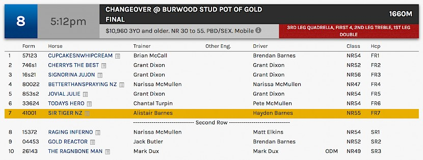 Sir Tiger races at 8.12pm NZ time at Albion Park on Friday night.