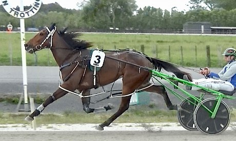 Tommy Lincoln, wearing spreaders, highballs in front at the Pukekohe workouts last Saturday.