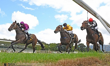 Gallops chiefs are planning to hold one meeting in each region per week. PHOTO: Race Images.