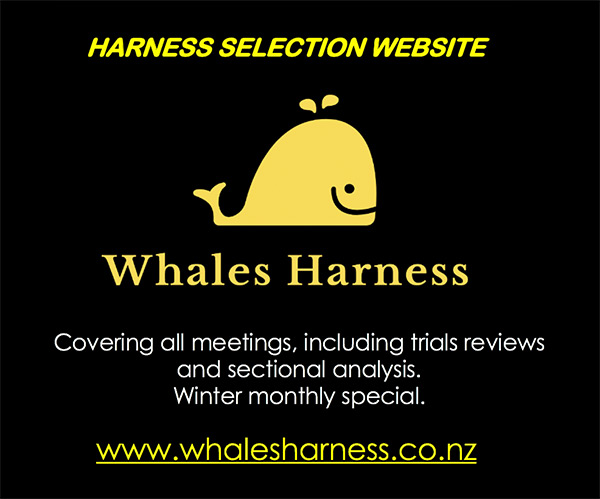 Whales Harness