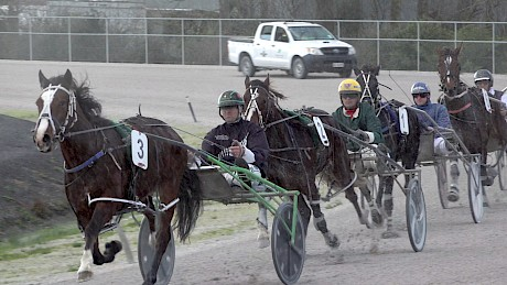 Two early winners, Larry Lincoln leads American Dealer in their heat at Pukekohe on Saturday.