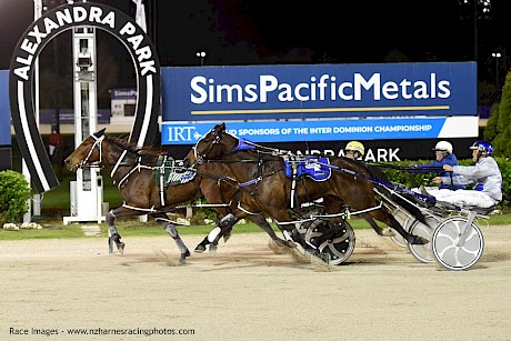 Tommy Lincoln dashes late to grab Major Jellis at Alexandra Park. PHOTO: Megan Liefting/Race Images.