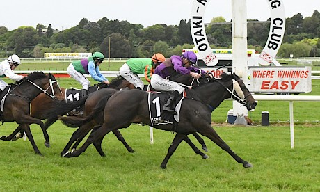 Lincoln Star holds on strongly for Jonathan Riddell at Otaki nine days ago. PHOTO: Peter Rubery/Race Images.