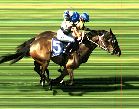 The official photo finish gives it to Dragon Storm. PHOTO: FinishLinePhotos Ltd.