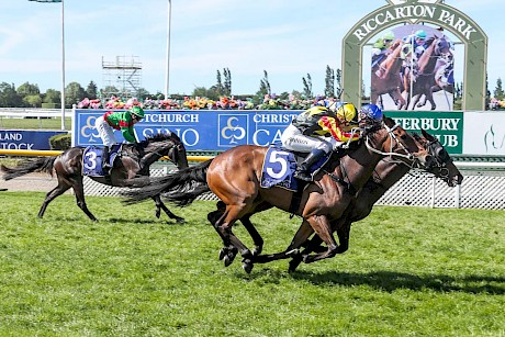 Lincoln King is nosed out by Dragon Storm in the New Zealand Cup. PHOTO: Ajay Berry/Race Images.
